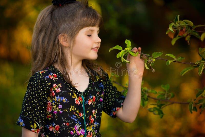 Het mooie meisje ruikt boom in park stock foto