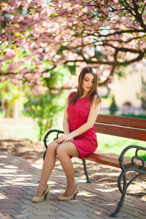 Het mooie meisje stellen aan de fotograaf tegen de achtergrond van bloeiende roze bomen De lente Sakura stock fotografie