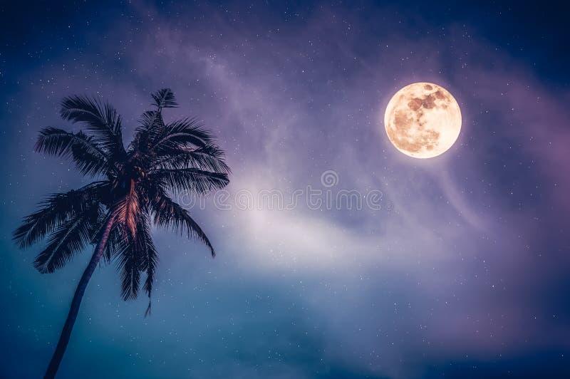 Het mooie mistige nachtlandschap van kleurrijke hemel, slingert tussen kokosnotenpalm en heldere volle maan met vele sterren stock foto's