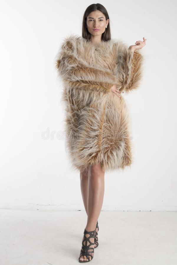 Het mooie modelbrunette van het vrouwenmeisje in een bontjas stock afbeelding