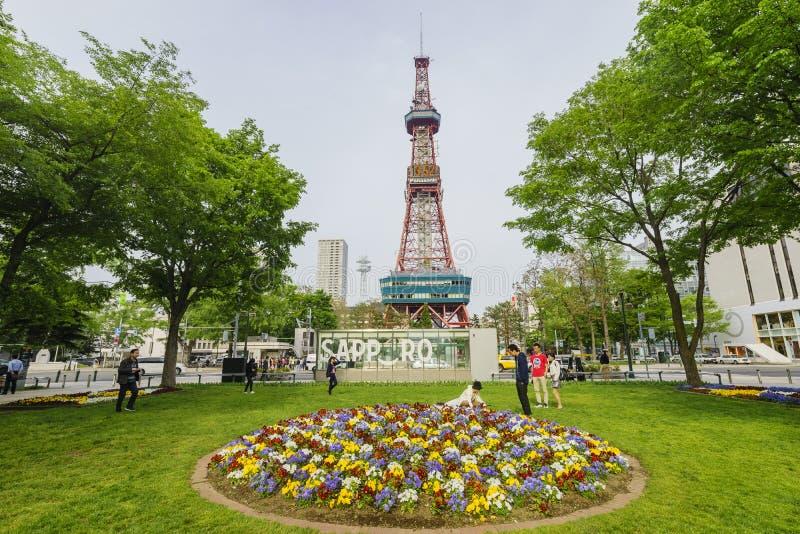 Het mooie Odori-Park met TV-Toren royalty-vrije stock foto's