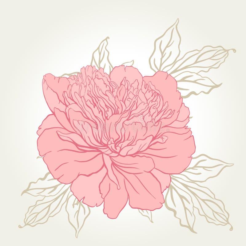Het mooie ontwerp van het pioenboeket op beige achtergrond vector illustratie