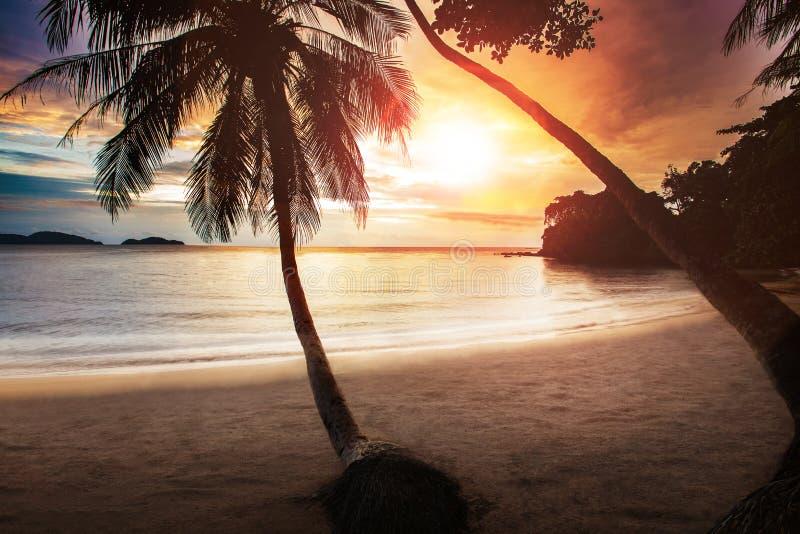 Het mooie op zee strand van de zonsonderganghemel met paar van kokospalm royalty-vrije stock afbeeldingen