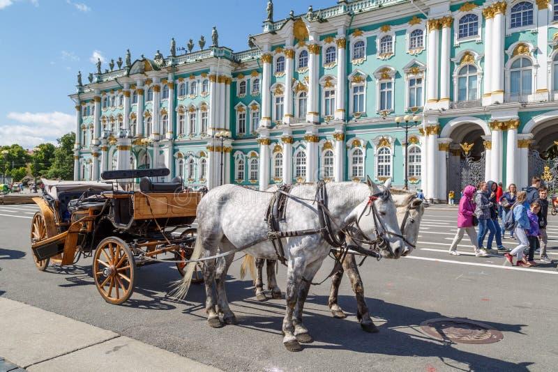 Het mooie open houten vervoer, die door twee witte paarden uitrusten bevindt zich in het vierkant die op toeristen wachten stock fotografie