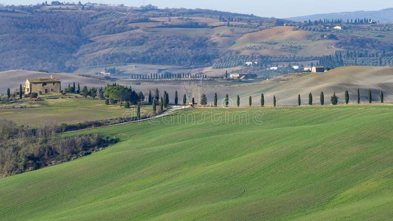 Het mooie platteland tussen Pienza en San Quirico D 'Orcia, Siena, Toscanië, Italië royalty-vrije stock fotografie