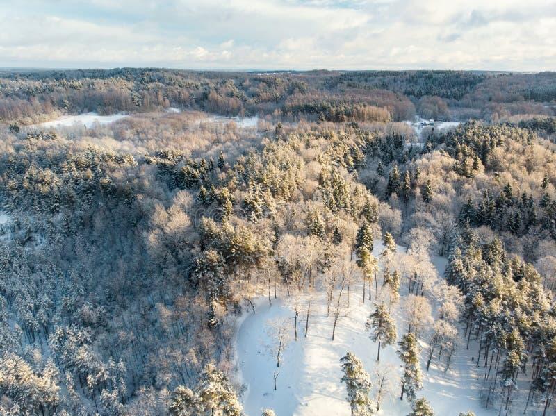 Het mooie satellietbeeld van sneeuw behandelde pijnboombossen en een weg die onder bomen winden Rijpijs en hoar vorst die bomen b stock foto