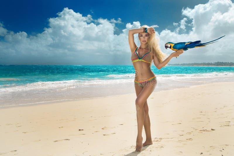 Het mooie sexy bikinivrouw stellen op het Caraïbische strand met een kleurrijke papegaai royalty-vrije stock foto