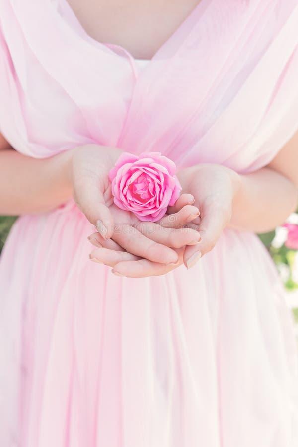 Het mooie sexy meisje in een roze kleding, die zich in de tuin op een zonnige heldere de zomerdag bevinden houdt in handen toenam royalty-vrije stock foto