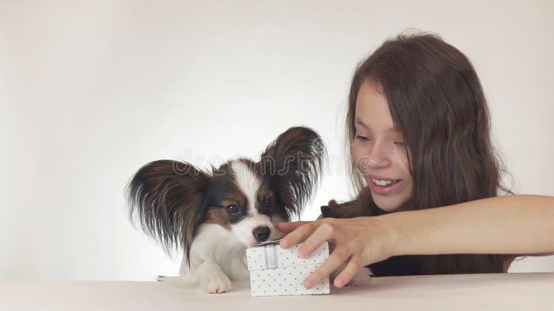 Het mooie tienermeisje geeft een heerlijke gift aan een hond Continentaal Toy Spaniel Papillon op witte achtergrond royalty-vrije stock foto