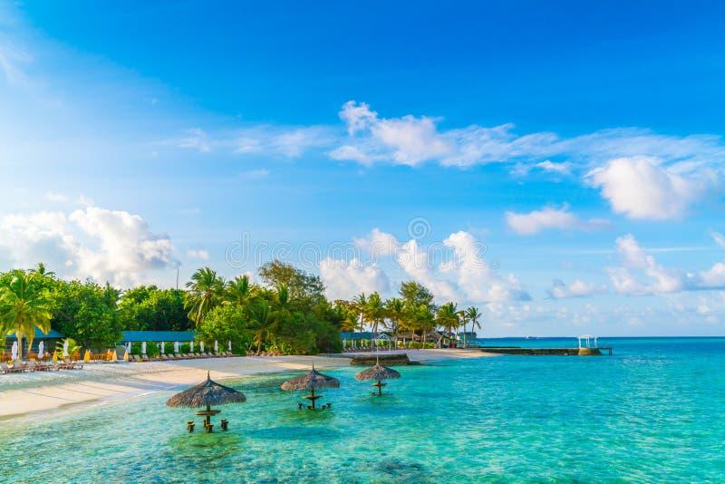 Het mooie tropische eiland van de Maldiven met wit zandig strand en Se royalty-vrije stock foto