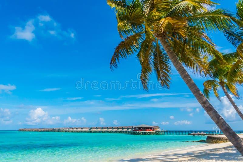 Het mooie tropische eiland van de Maldiven, witte zandige strand en overzees w stock afbeeldingen
