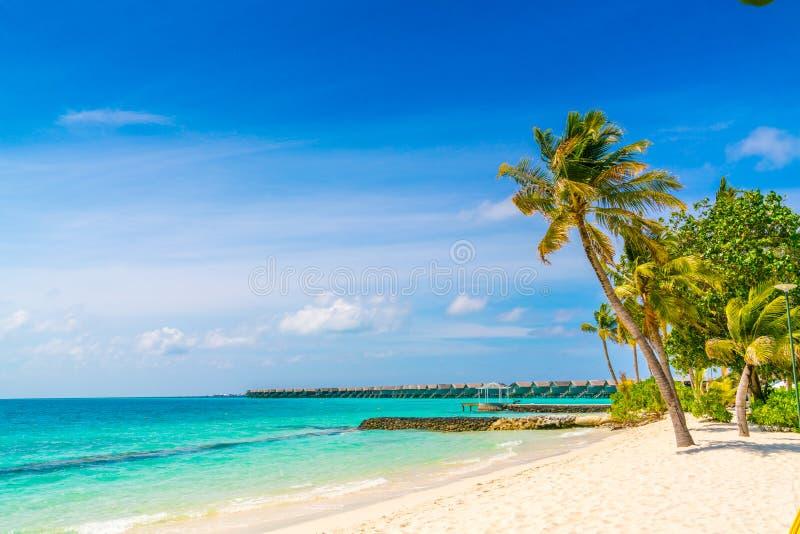 Het mooie tropische eiland van de Maldiven, witte zandige strand en overzees w stock afbeelding