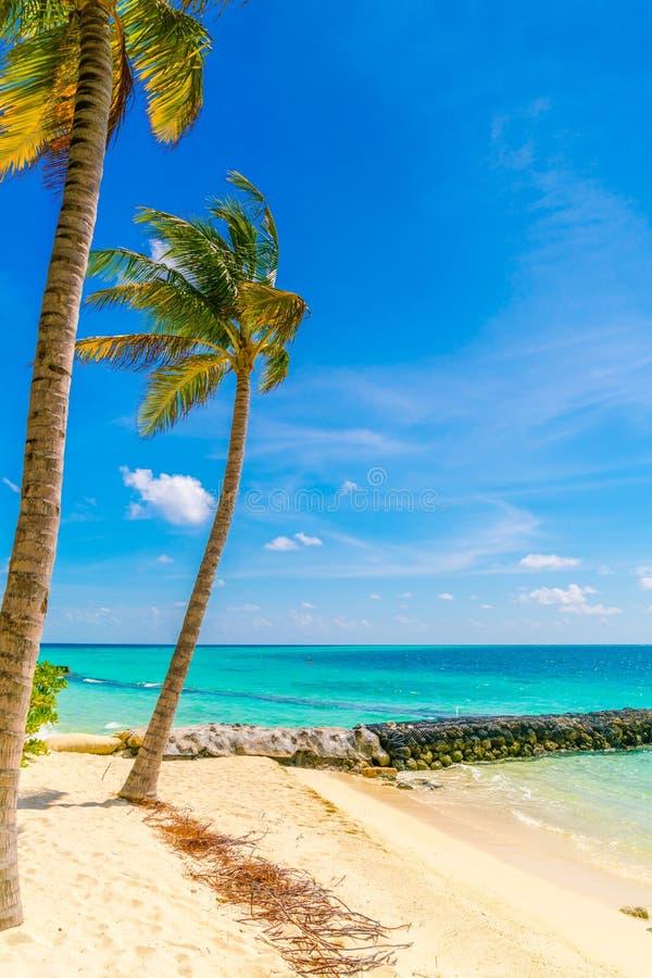 Het mooie tropische eiland van de Maldiven, witte zandige strand en overzees w stock foto