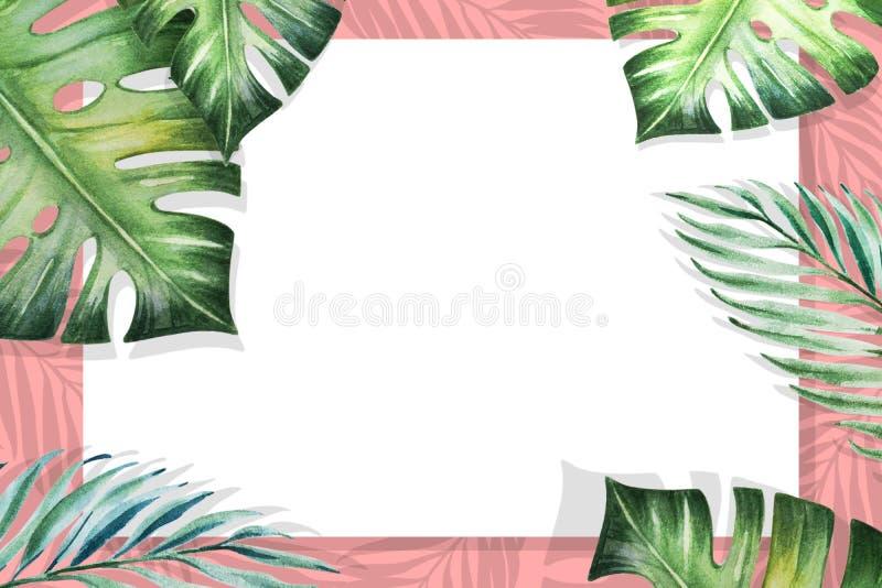 Het mooie tropische kader van de bladerengrens Monstera, palm Het Schilderen van de waterverf Witboek op roze achtergrond vector illustratie