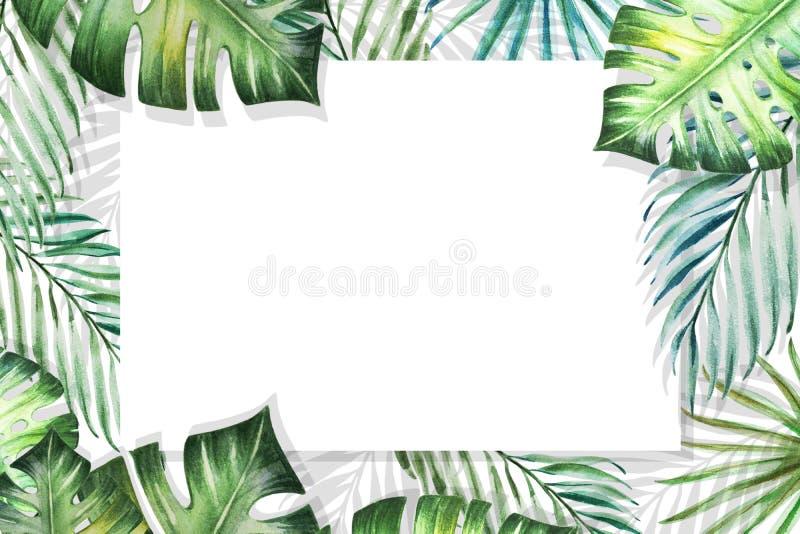 Het mooie tropische kader van de bladerengrens op witte achtergrond Monstera, palm Het Schilderen van de waterverf royalty-vrije illustratie