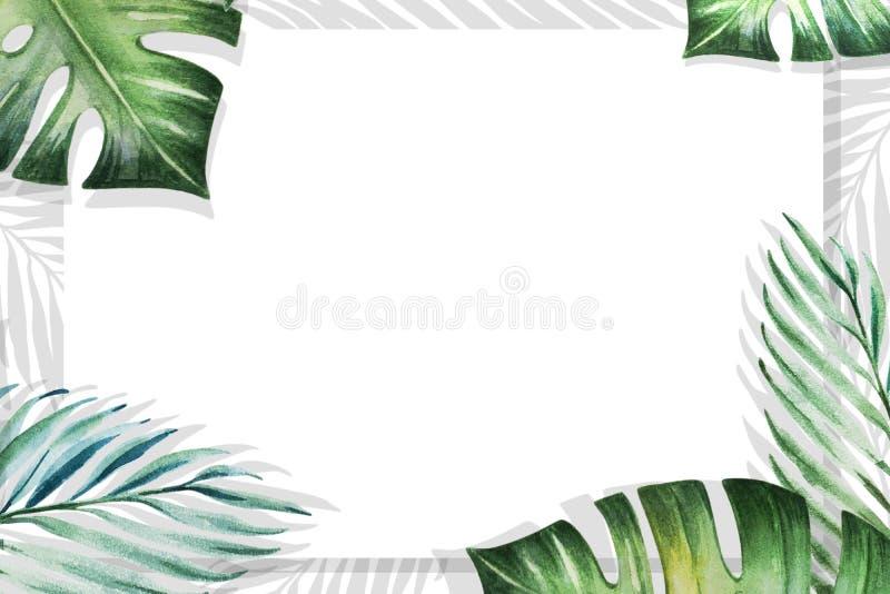 Het mooie tropische kader van de bladerengrens op witte achtergrond Monstera, palm Het Schilderen van de waterverf stock illustratie