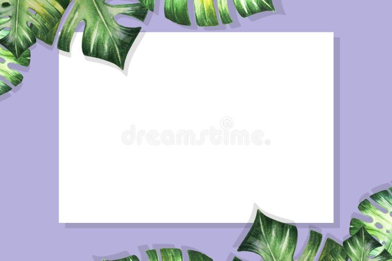Het mooie tropische kader van de bladerengrens palm Het Schilderen van de waterverf Witboek op blauwe achtergrond royalty-vrije illustratie