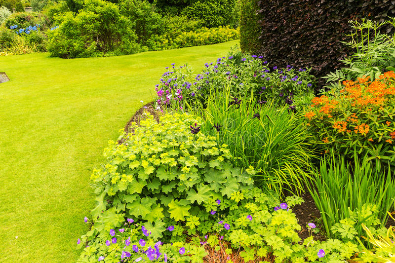 Het mooie tuin modelleren in de zomer stock afbeeldingen
