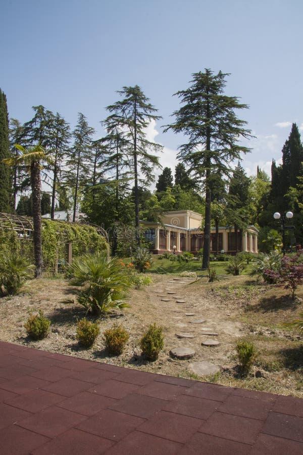 Het mooie tuinieren royalty-vrije stock fotografie