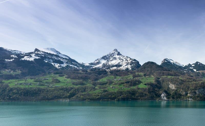 Het mooie turkooise panorama van het bergmeer met snow-covered pieken en groene weiden en bossen stock foto's
