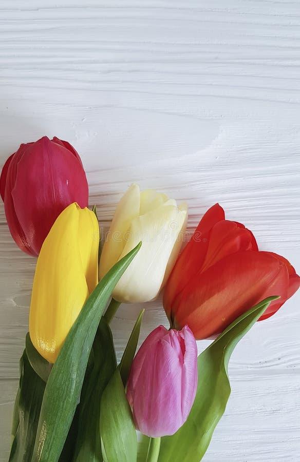 Het mooie verse ontwerp van de boeketbloei van tulpen op witte houten stock fotografie