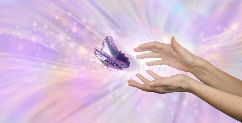 Het mooie vreedzame ogenblik van een vlinder die worden vrijgegeven stock fotografie