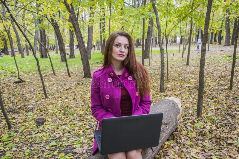 Het mooie vrouw werken en het schrijven brieven op laptop in de herfstpark stock fotografie