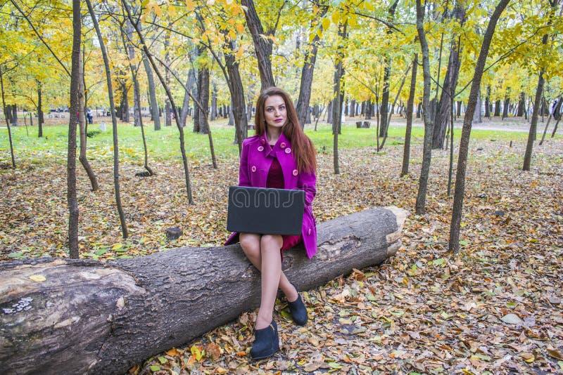 Het mooie vrouw werken en het schrijven brieven op laptop in de herfstpark royalty-vrije stock foto