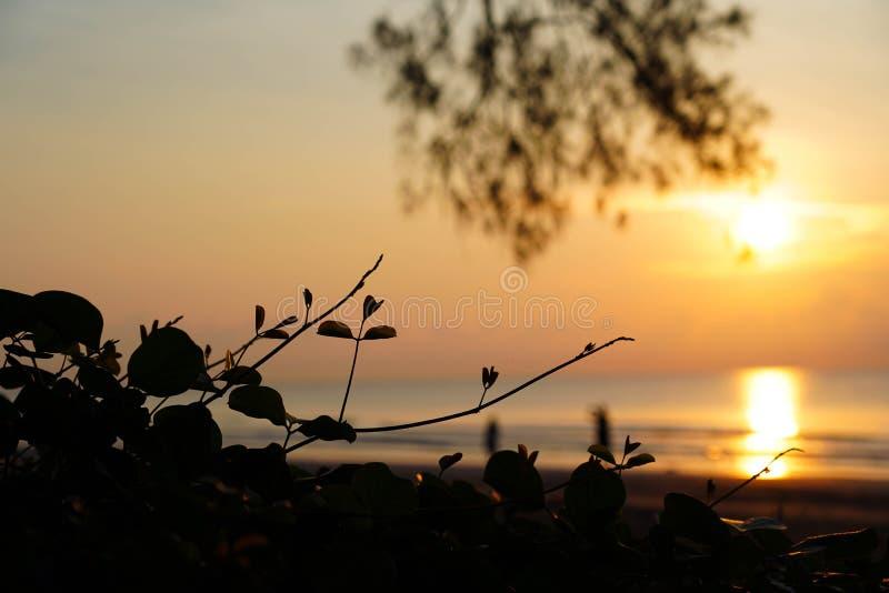 Het mooie zonsondergang en zonsopgang oceaanlandschap van de zeegezichthemel van aard stock afbeelding