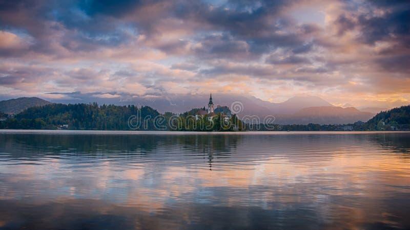 Het mooie zonsopganglandschap van beroemd meer tapte in Slovenië met kleine kerk op groen eiland op purpere bewolkte hemel en ber stock afbeeldingen
