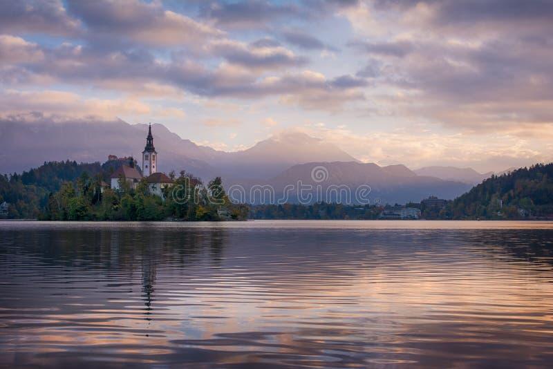 Het mooie zonsopganglandschap van beroemd meer tapte in Slovenië met kleine kerk op groen eiland op purpere bewolkte hemel en ber royalty-vrije stock fotografie