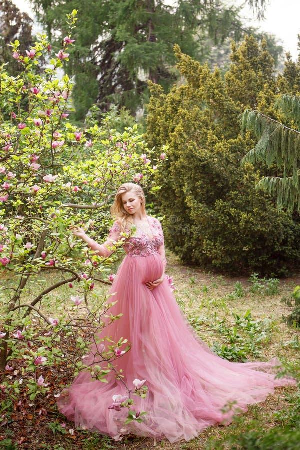 Het mooie zwangere meisje in lange roze fattinikleding wat betreft handbuik en bekijkt bloeiende magnolia in park royalty-vrije stock afbeeldingen