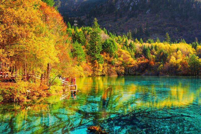 Het Multicolored Meer van het Vijf Bloemmeer onder dalingshout royalty-vrije stock afbeelding