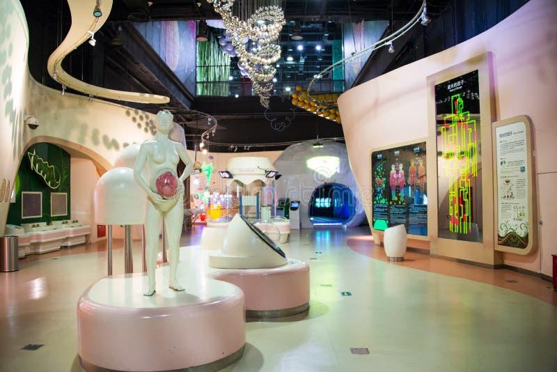 Het museum van Azië China, van Peking, van de wetenschap en van de technologie, binnententoonstellingszaal, royalty-vrije stock afbeeldingen