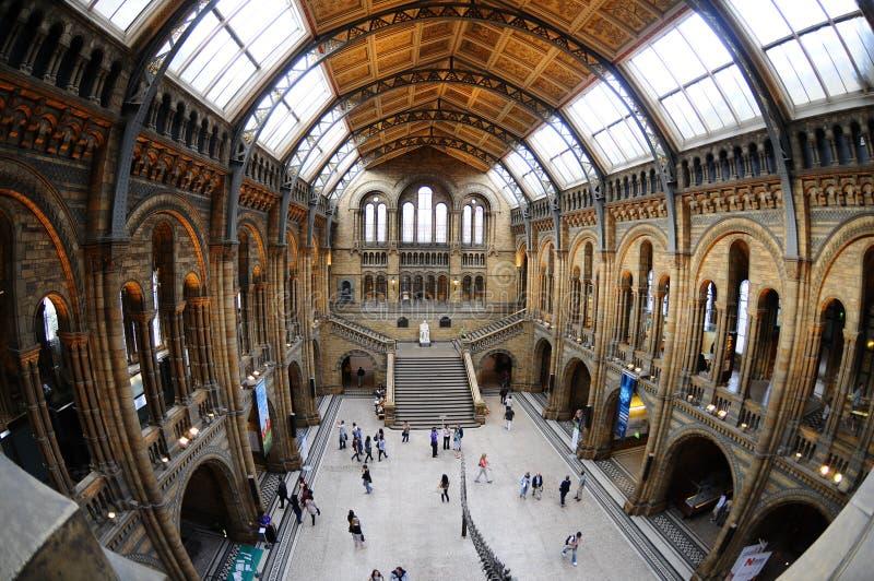 Het Museum van de Biologie, Londen royalty-vrije stock afbeelding