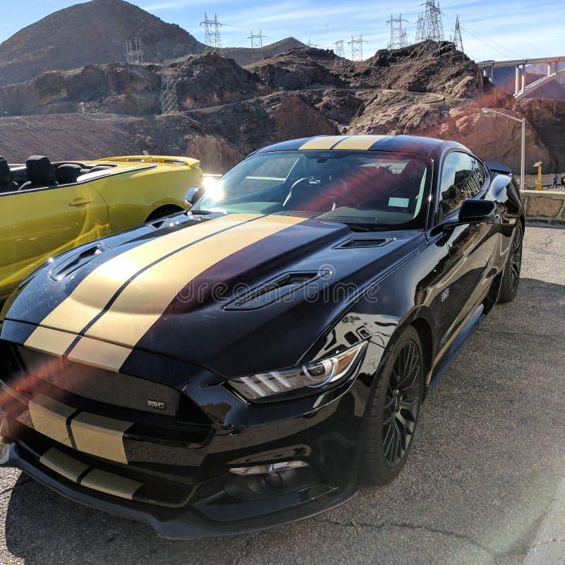 Het Mustang van Shelbygt royalty-vrije stock foto's