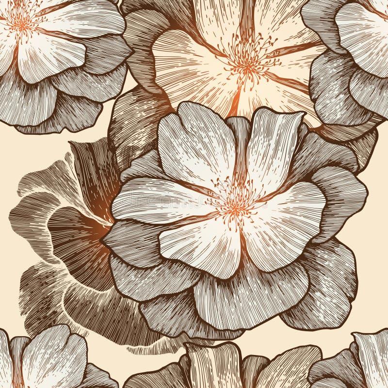 Het naadloze behang van de aantrekkingskracht met wilde rozen, hand-D royalty-vrije illustratie