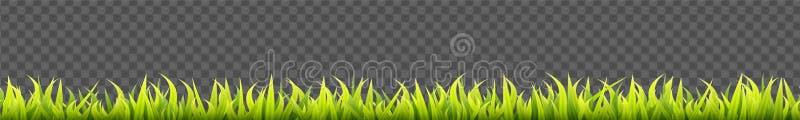 Het naadloze panorama van het de zomergras Groen de lente kruidengazon Gebied of weide horizontale decoratielijnen vector illustratie