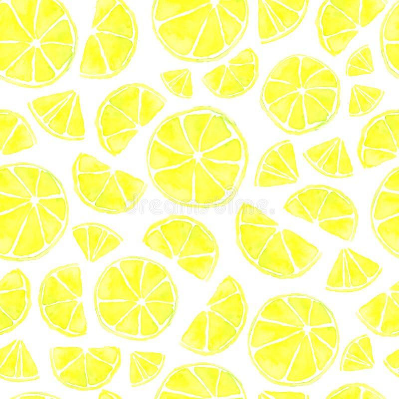 Het naadloze Patroon van de Citrusvrucht stock illustratie