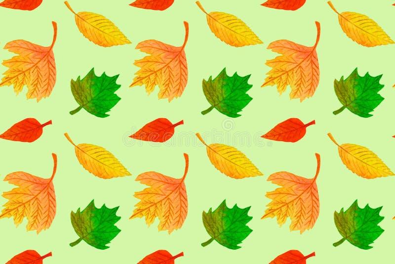 Het naadloze patroon van de waterverfherfst met kleurrijke bladeren royalty-vrije illustratie