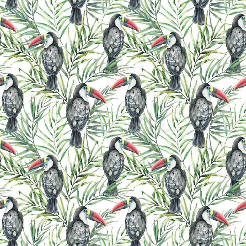 Het naadloze patroon van de waterverftoekan Hand geschilderde illustratie met tropische die vogel en palmbladen op wit worden geï royalty-vrije illustratie