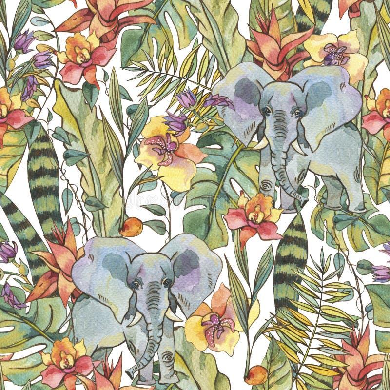 Het naadloze patroon van de waterverfwildernis, Bloemen van orchideeën, Liana royalty-vrije illustratie