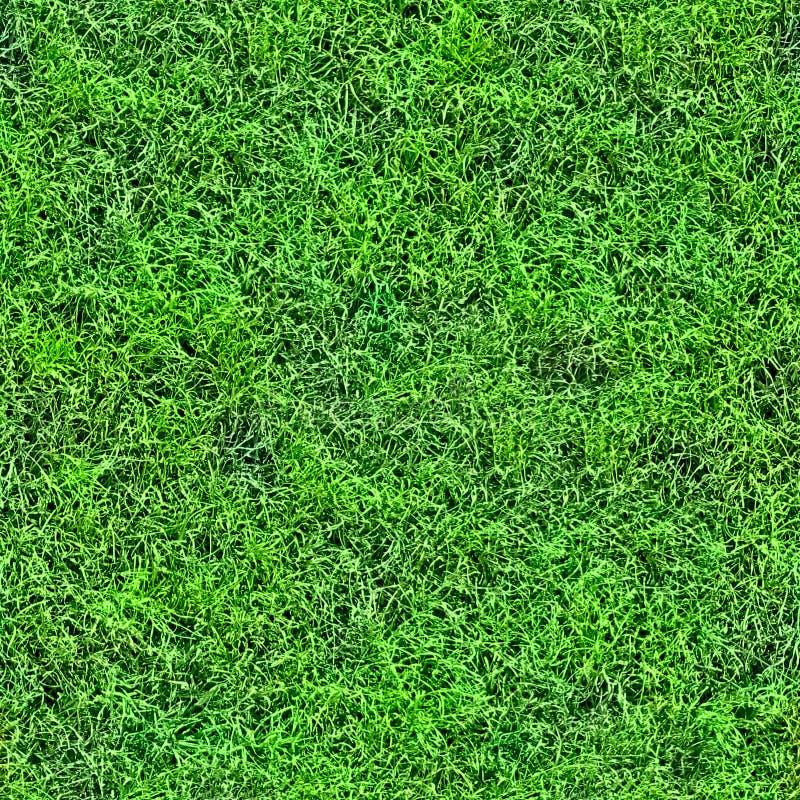 Het naadloze patroon van het gras (1 van 2). stock afbeelding