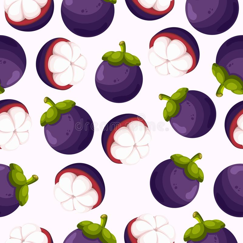 HET NAADLOZE PATROON VAN HET MANGOSTANfruit royalty-vrije illustratie