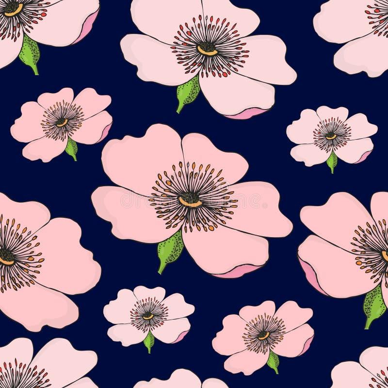 Het naadloze patroon van het roze bloeien van hond nam op donkerblauw toe Rozebottelillustratie stock illustratie