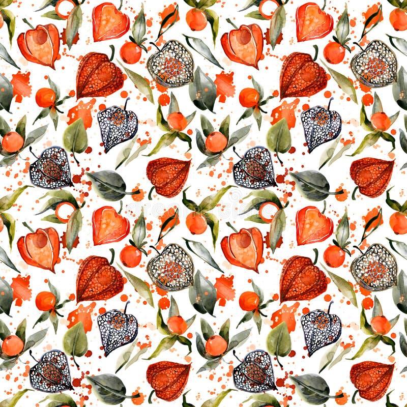 Het naadloze patroon van waterverfphysalis de illustratie van de de herfstbes stock illustratie