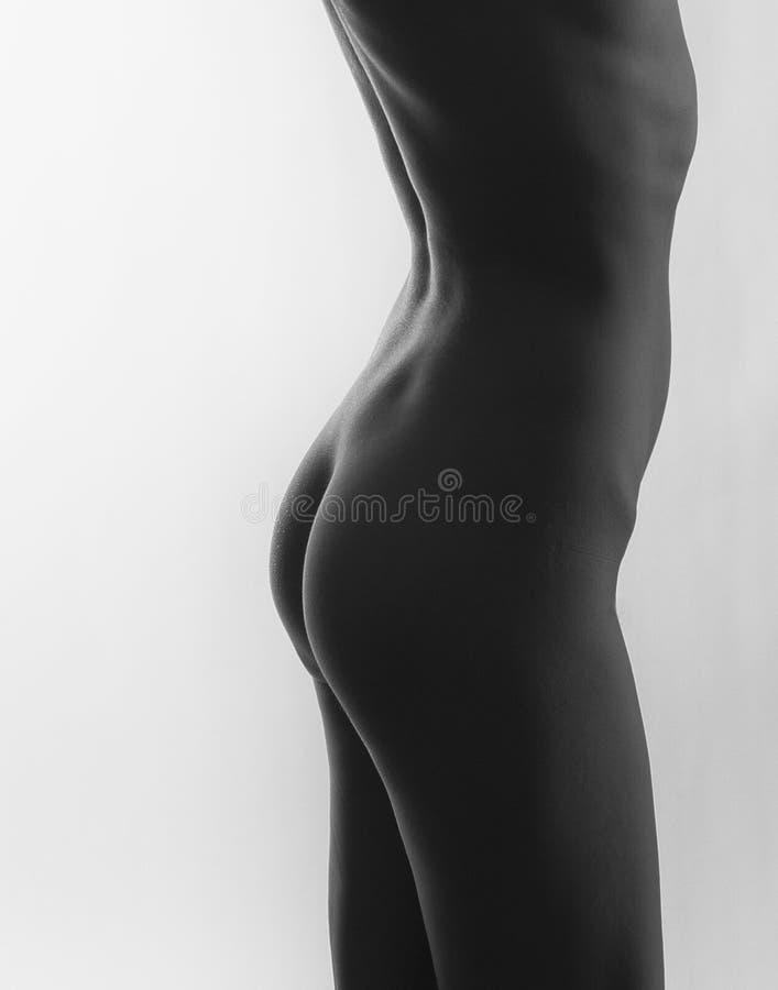 Download Het Naakte Torso Van De Vrouw Van Kant Stock Foto - Afbeelding bestaande uit mooi, jong: 54082062