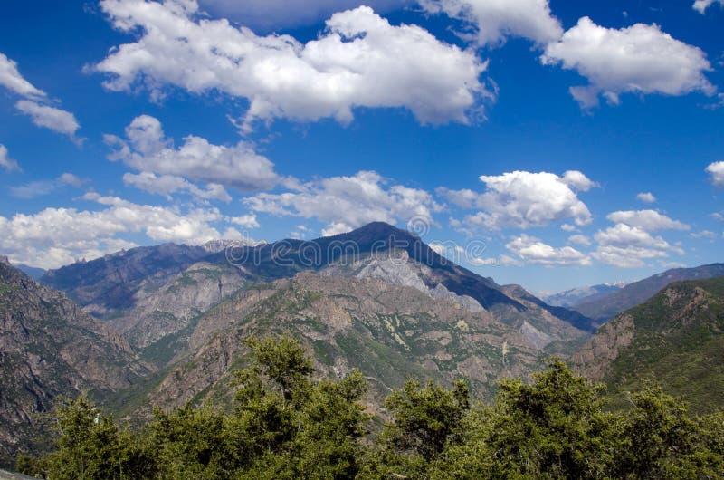 Het Nationale Bos van de sequoia, Californië, de V.S. royalty-vrije stock afbeeldingen