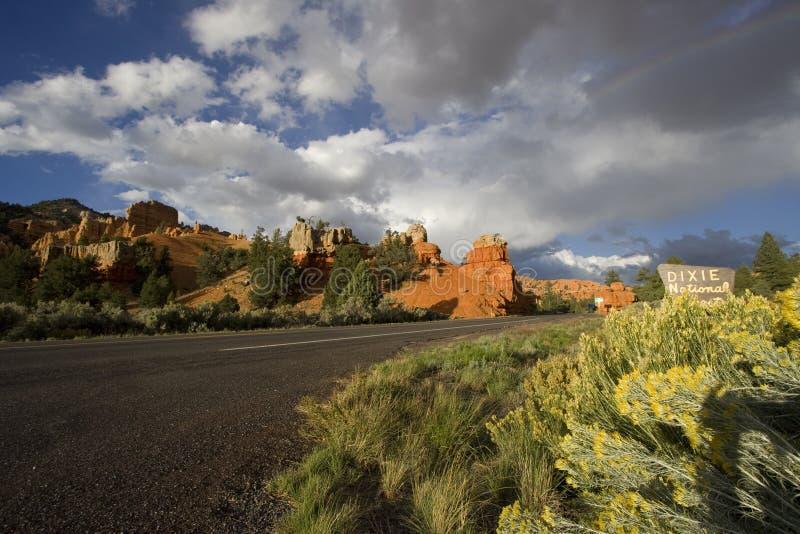 Het Nationale Bos van Dixie royalty-vrije stock afbeeldingen
