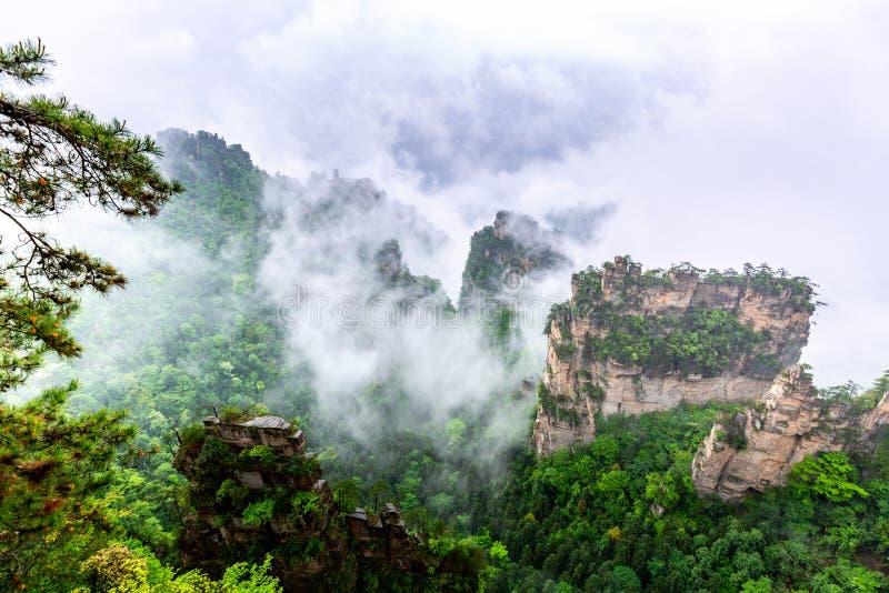 Het Nationale BosPark van Zhangjiajie Beroemde toeristische attractie in Wulingyuan, Hunan, China Verbazend natuurlijk landschap  royalty-vrije stock afbeelding
